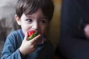 Le développement cognitif de l'enfant, apprentissage de l'environnement